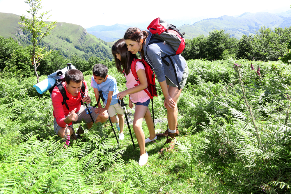 Family on a trekking day looking at wild flowers